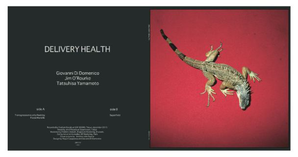 delivery-health-cover-03-pdf